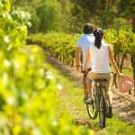 Hunter Valley Bike Tours